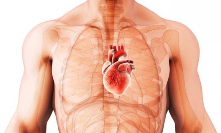 Buat Pria, Kurangi Resiko Penyakit Jantung Dengan Tips Ini Ya Guys!